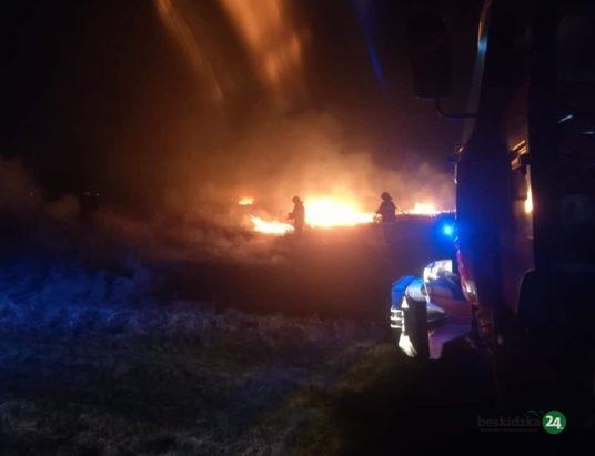 Wypalanie nieużytków trwa w najlepsze. 20 pożarów na Żywiecczyźnie