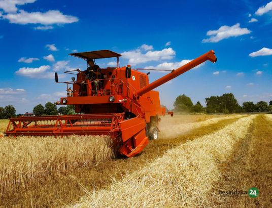 Żniwa młodych rolników