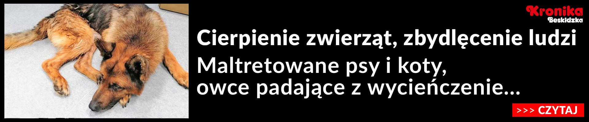 KB_zwie