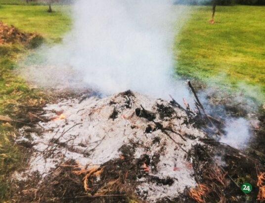 Czechowice-Dziedzice: Strażnicy kontra palenie trawy i gałęzi w ogródkach